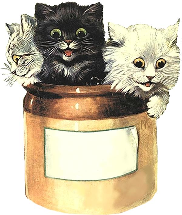 tube chats